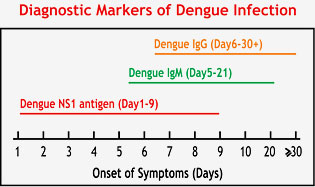 Diagnostic Markers of Dengue Infection